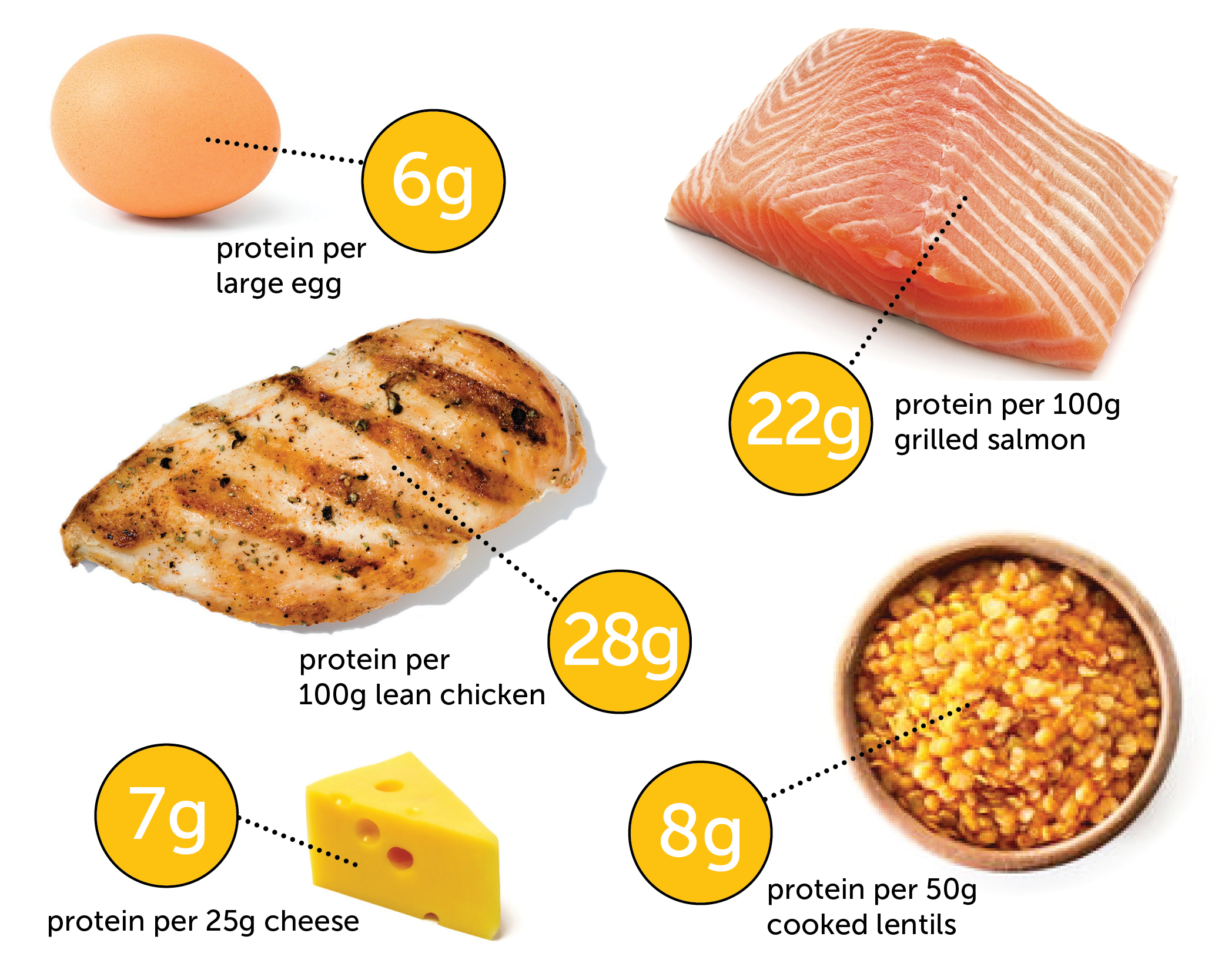 We find out how much protein in a chicken egg