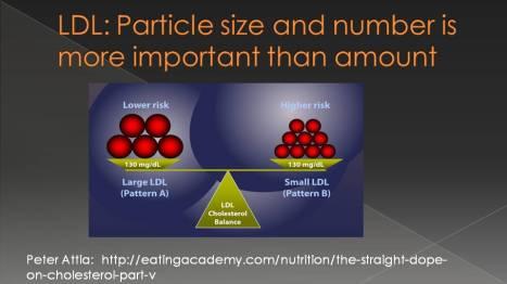ldl-particle-size